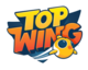 Top Wing